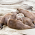 lazy group of asian small clawed otter stock photo © michaklootwijk