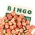 houten · nummers · gebruikt · bingo · top · kaart - stockfoto © michaklootwijk