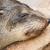 cape fur seal arctocephalus pusillus stock photo © michaklootwijk