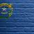 zászló · Nevada · csillagok · kék · piros · szél - stock fotó © michaklootwijk