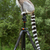 Ring-tailed lemur sitting on tripod stock photo © michaklootwijk
