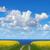 campo · primavera · sol · nuvens · natureza - foto stock © mikdam