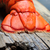 homár · farok · tányér · étel · tengeri · hal · gurmé - stock fotó © mikdam