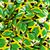 vlag · Jamaica · computer · gegenereerde · illustratie · reizen - stockfoto © mikhailmishchenko