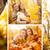 el · ele · tutuşarak · sonbahar · orman · aile - stok fotoğraf © milanmarkovic78