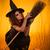 cadılar · bayramı · kabak · cadı · süpürge · eski · fener - stok fotoğraf © milanmarkovic78
