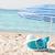 beach scene stock photo © milanmarkovic78