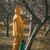 化学品 · 植木屋 · 適用 · 肥料 · フルーツ · 春 - ストックフォト © milanmarkovic78