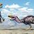 terreur · vogel · computer · gegenereerde · 3d · illustration · zon - stockfoto © miro3d