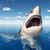 branco · tubarão · isca · oceano · água - foto stock © miro3d
