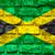 Jamaica · witte · eiland · vakantie · knop - stockfoto © mironovak