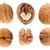 walnuts stock photo © mironovak