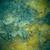 marrom · verde · velho · ferrugem · metal · prato - foto stock © MiroNovak