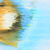 abstrato · efeito · acaso · horizontal · amarelo · azul - foto stock © molaruso