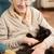 macska · közelkép · portré · szem · haj · háttér - stock fotó © monkey_business