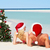 couple sitting on beach with christmas tree and hats stock photo © monkey_business