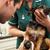 vrouw · onderzoeken · hond · huisdier · haren · groene - stockfoto © monkey_business