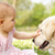 baby girl in summer dress sitting in field petting family dog stock photo © monkey_business
