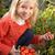 девушки · помидоров · продовольствие · портрет · улыбаясь · свежие - Сток-фото © monkey_business