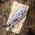 vers · houten · uien · water · hout · vis - stockfoto © Moradoheath