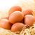 eggs stock photo © moradoheath