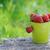 completo · morangos · fruto · verão · recipiente - foto stock © Moravska