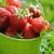 morango · balde · grama · comida · natureza · fundo - foto stock © Moravska