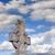 Kelt · çapraz · eski · mezarlık · Mezarlığın · queensland - stok fotoğraf © morrbyte