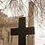 oude · begraafplaats · land · begraafplaats · gras - stockfoto © morrbyte