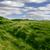 kilátás · linkek · golfpálya · égbolt · nyár · mező - stock fotó © morrbyte