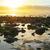 belo · onda · praia · Irlanda · oceano · azul - foto stock © morrbyte