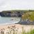 海岸 · アイルランド · 海 · アイルランド · 海岸線 · 表示 - ストックフォト © morrbyte