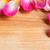Geel · steeg · bloem · textuur · achtergrond - stockfoto © mpessaris
