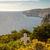 ahşap · çapraz · kıyı · göl · beyaz · hareket - stok fotoğraf © mps197