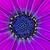 深い · 紫色 · アフリカ · デイジーチェーン · 花 · 自然 - ストックフォト © mroz