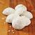 мексиканских · свадьба · Sweet · Cookie · Cookies · коричневый - Сток-фото © msphotographic
