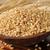 tarwe · zemelen · oor · witte · fitness · ontbijt - stockfoto © msphotographic