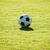 football · sol · objectif · football · nature · domaine - photo stock © muang_satun