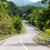 estrada · curvas · para · baixo · nuvens · grama · verão - foto stock © muang_satun