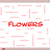 Iris · Tulip · цветы · желтый · цветок - Сток-фото © mybaitshop