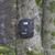yosun · havlama · ağaç · orman · soyut · dizayn - stok fotoğraf © mybaitshop