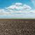 föld · mezőgazdasági · mező · tavasz · kész · vetés - stock fotó © mycola