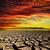 dramático · céu · secar · rachado · terra · natureza - foto stock © mycola