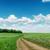 緑 · ファーム · 青空 · 白 · 雲 · 美しい - ストックフォト © mycola