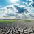 劇的な · 空 · 干ばつ · 地球 · 自然 · 光 - ストックフォト © mycola
