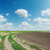 winding rural road goes to cloudy horizon stock photo © mycola