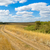 road in steppe stock photo © mycola
