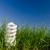 energia · lampada · verde · campo · business - foto d'archivio © mycola