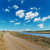 dirty rural road near river and blue sky stock photo © mycola