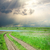 rural road in green grass under dramatic sky stock photo © mycola